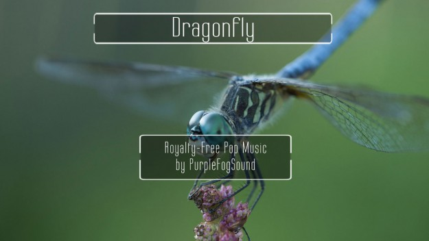 Royalty Free Pop Music - Dragonfly by PurpleFogSound