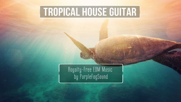 Tropical House Guitar EDM Music for Media by PurpleFogSound