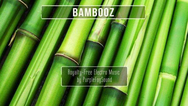 Electro Music for Media - Bambooz by PurpleFogSound